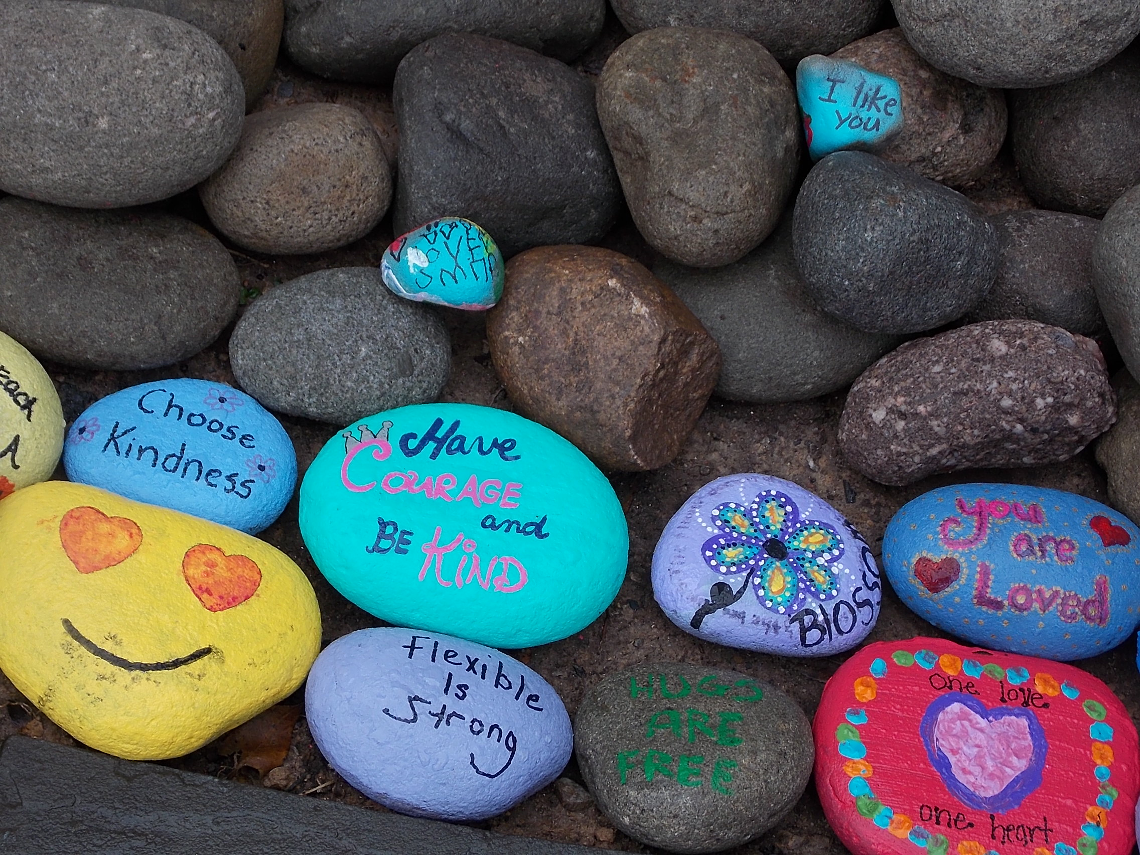 colorfully painted rocks with messages of kindness